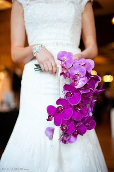 Find images and videos about purple, wedding and bouquet on We Heart It - the app to get lost in what you love. Purple Orchid Bouquet, Purple Orchid Wedding, Orchid Bridal Bouquets, Purple Wedding Bouquets, Purple Orchids, Bride Bouquets, Floral Wedding, Wedding Flowers, Trendy Wedding
