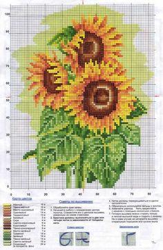 Цветы | Записи в рубрике Цветы | Дневник Lyuda52 : LiveInternet - Российский Сервис Онлайн-Дневников