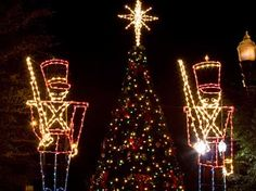 Miller Lights loves decorating trees both inside and outside. We love coming up with ideas for the trees, swags and other displays. We even add figures to your scenes. Click on pin to find out about our services.