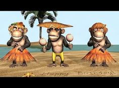 Funny Happy Birthday Song. Monkeys sing Happy Birthday To You - YouTube
