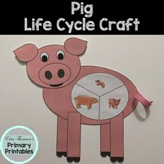 Craft includes: life cycle charts (with and without pictures) head ears snout body legs Elementary Science, Teaching Science, Science Activities, Elementary Schools, Cycle Pictures, Life Cycle Craft, Cut And Paste, Life Cycles, Farm Animals
