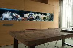 Was ist beim Aquariumbau zu beachten? Teil 2