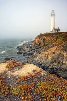 Pigeon Point Lighthouse on a Foggy Day