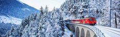 Best European Cities To Visit During The Winter From sleigh rides through the Swiss farmland and skiing the amazing Alps to relaxing in open air warm pools Winter Tops, Alps, Skiing, Transportation, Snow, Seasons, City, Green, Outdoor
