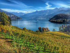Spiez Switzerland - simply stunning Sourced and pinned by courtesy of @pascalmeier74