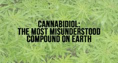 Just because cannabidiol is a compound found in marijuana people assume it is bad for you.