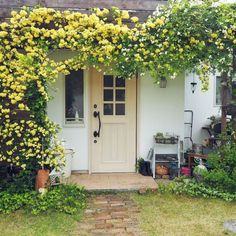 moki-productさんの、玄関/入り口,ナチュラル,ランタン,カフェ風,玄関ドア,庭の草花,玄関前,アメブロやってます♪,玄関ガーデン,庭の植物たち,モッコウバラのアーチ,植物のある生活,インスタやってます!,シャビーが好き♡,子供と暮らす,植物のある暮らし,ベストショット,のお部屋写真 Garden Picnic, Potager Garden, Garden Paths, Cottage Door, Rose Cottage, Cottage Garden Design, Home And Garden, Colonial Garden, Beautiful Flowers Garden