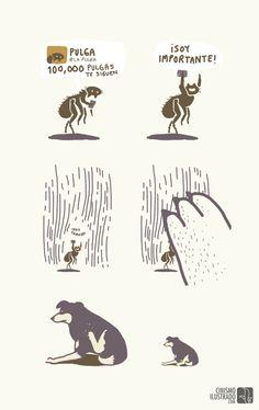 El espíritu de los cínicos # Illustrations