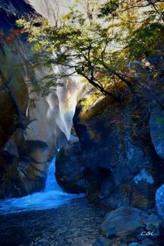 【紅葉写真館】御岳昇仙峡(山梨県)の紅葉投稿写真