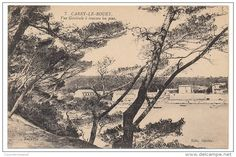 Cartes Postales > Europe > France > [13] Bouches-du-Rhône > Carry-le-Rouet - Delcampe.fr