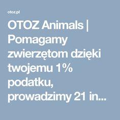 OTOZ Animals | Pomagamy zwierzętom dzięki twojemu 1% podatku, prowadzimy 21 inspektoratów oraz 8 schronisk dla bezdomnych zwierząt