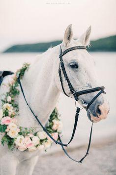 soon on the blog www.sonyakhegay.com/blog #horse #decor #wedding #flowers #floralwreath #floral #wreath #weddingideas #sonyakhegay