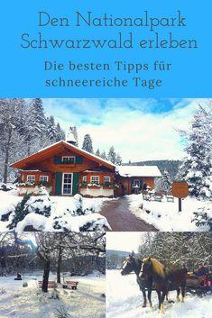 WANDERN//EINKEHREN//GENIESSEN - mit diesen Tipps erlebt ihr den tannenreichsten Nationalpark Deutschlands ganz intensiv
