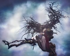 In the Boughs of the Dream Tree by Kindra Nikole, via Flickr