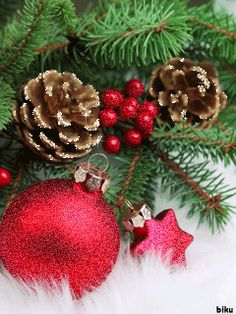 Animated Christmas Tree, Merry Christmas Gif, Merry Christmas Wallpaper, Merry Christmas Wishes, Christmas Hearts, Cozy Christmas, Green Christmas, Christmas Greetings, Christmas Holidays