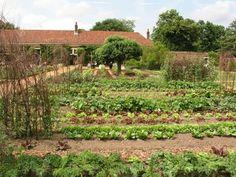 Backyard Garden Landscape, Small Backyard Gardens, Large Backyard, Garden Oasis, Big Garden, Green Garden, Spring Garden, Water Garden, Organic Gardening