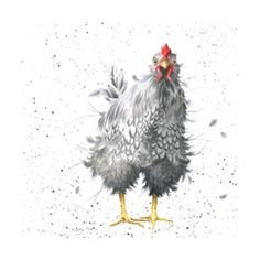 Wrendale Curious Hen Greeting Card