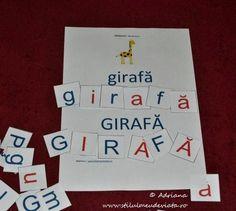 girafa, litera G Full Bed Loft