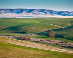 Get details about the exciting, annual Pendleton Round-Up and other Pendleton Oregon attractions like the Steens Mountains. State Of Oregon, Oregon Trail, Pacific Coast, Pacific Northwest, Pendleton Oregon, Joseph Oregon, Places To Travel, Places To Visit, Luxury Camping