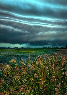 """Days of Thunder"" Wisconsin Horizons by Phil Koch. Lives in Milwaukee, Wisconsin, USA. http://phil-koch.artistwebsites.com https://www.facebook.com/MyHorizons"