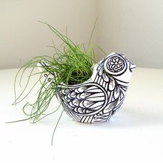 It would be nice to grow some chives or something similar in this