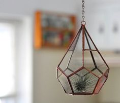 I think I need a terrarium in my life. Hanging Teardrop Glass Terrarium -- for air plant terrarium or small succulent -- stained glass -- terrarium supplies -- eco friendly
