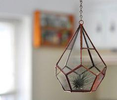Copper hanging terrarium