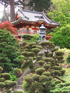 A Japanese garden in San Francisco, California, USA