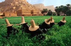 Yemen | Steve McCurry- In a very hot day, women dressing up traditional clothes to work in the field.