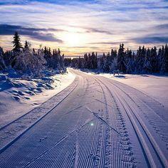 Langrennsbilder.com | Skibilder, vinterlandskap, langrenn