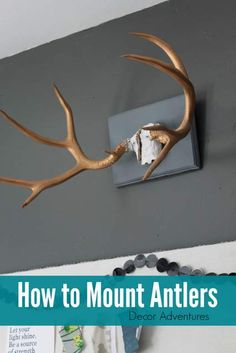 How to clean and display antler sheds crafts pinterest antlers learn how to easily mount antlers found at flea markets for a home decor item solutioingenieria Images