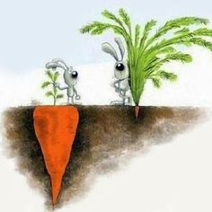 Success Isn't Always What You See