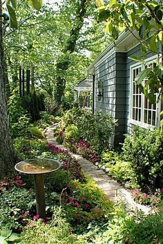 Lovely Shade garden #would love this look in my yard.