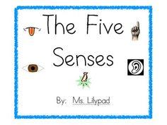 Five Senses Mini-Unit for Pre-K, Kindergarten, or 1st Grade - lesson plans, ideas for five senses centers, posters, and printables