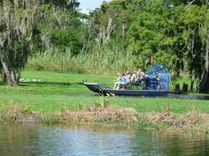 Black Hammock Airboat Rides Central Florida Orlando www.theblackhammock.com