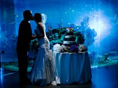 Charleston Aquarium Wedding  <3 Travel Journeys <3 Destination Weddings & Honeymoons <3 www.travel-journeys.com <3