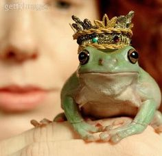 Always good to have a frog prince around.