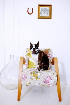 13 Photos of Pets on Chic Furniture, Just Because via @domainehome