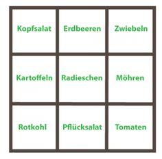 Beispiel eines Anbauplans im Quadratgarten