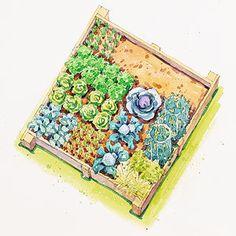 Planting Plans Inspired by the White House Kitchen Garden Spring Vegetable Garden, Vegetable Garden Planning, Easy Garden, Edible Garden, Spring Garden, Vegetable Gardening, Veg Garden, Harvest Garden, Gardening Tips