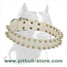Collar Leather Collar, Jewelry, Fashion, Moda, Leather Necklace, Jewels, Fashion Styles, Schmuck, Jewerly