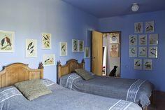 Quarto azul com figuras de pássaros.  Fotografia: Ricardo Labougle.