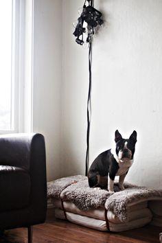 DIY Dog Bed Made from Children's Mattresses on Brigg, Remodelista