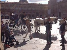 Oggi sposi, un cocchio in piazza Maggiore