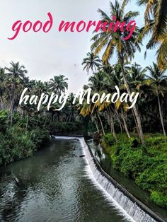 Good Morning Wishes Quotes, Good Morning Happy Monday, Morning Thoughts, Good Morning Coffee, Good Morning Good Night, Good Morning Images, Monday Images, Google Images, Traveling By Yourself