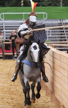 Joram van Essen jousts on his Murgese stallion Zogo during the Grand Tournament of Sankt Wendel (photo from the GTSW website)