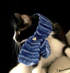 Cachecol pet para gato ou cachorro