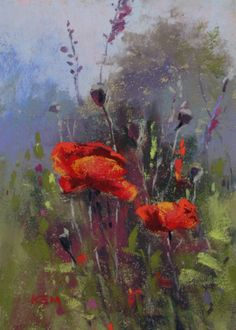 earlymorningpoppies ©Karen Margulis