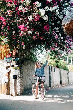 Девушка тянется к балийскому цветку на дереве на острове Gili Air. Follow me on Instagram @chebesovfilms Gili Air, Around The Worlds, Flowers, Instagram, Florals, Flower, Bloemen