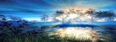 Beautiful nature timeline cover banner